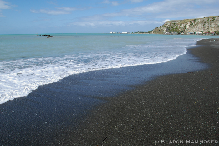 The beach in Kaikoura