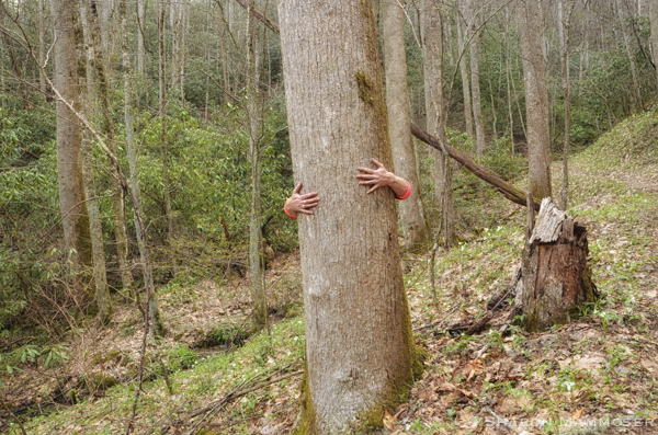 Trees have such strength! Hug one today and see if any is transferred to you.