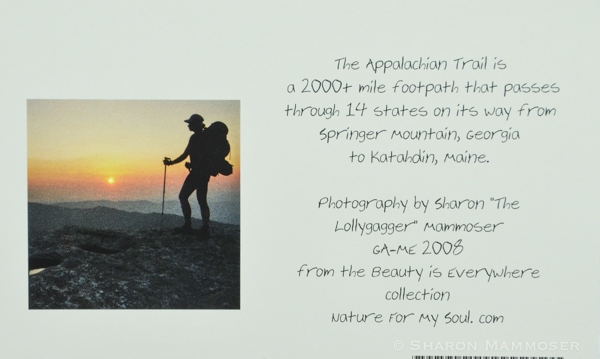 aa appalachian trail-5450