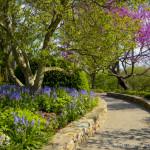Gardens at NC Arboretum