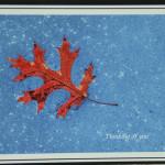 Oak Leaf*