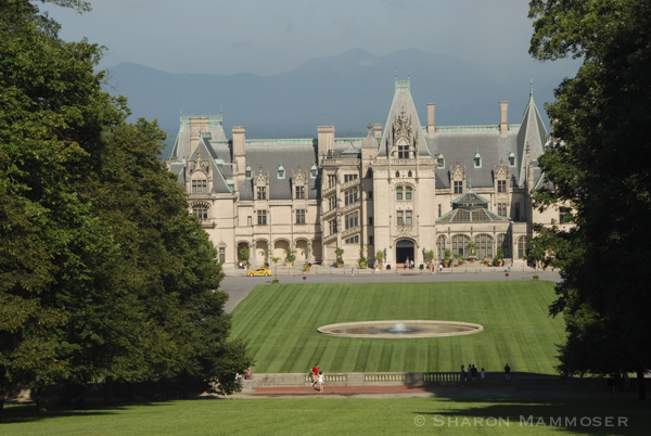 The famous Biltmore Estate brings in lots of visitors!