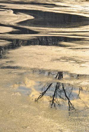 ice--4.jpg