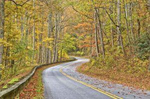 fall--16.jpg