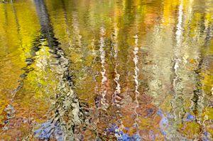 fall--4-2.jpg