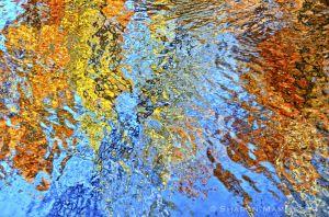 fall--5-2.jpg