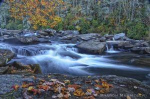 fall--6-c68.jpg