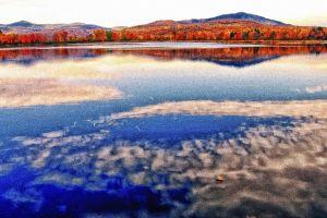 fall--7.jpg