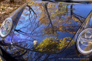 fall-6334.jpg