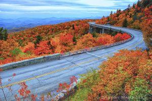 fall2--c8.jpg