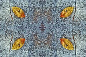 kaleidoscope18--3.jpg
