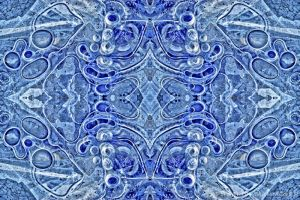 kaleidoscope18-2.jpg