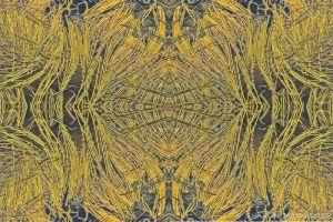 kaleidoscope19--2.jpg