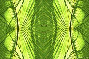 kaleidoscope19-2-2.jpg