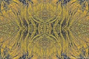 kaleidoscope19-2-3.jpg