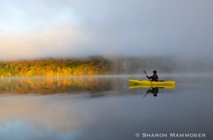 A foggy morning on Lewey Lake