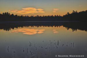 Sunrise at Middle Pond
