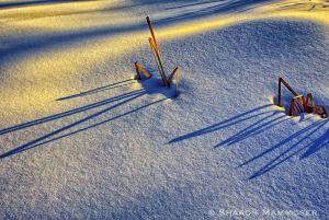 On Snow