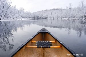 Canoeing in the Great Swamp of Eastern NY