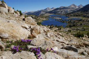 Along the John Muir Trail in CA