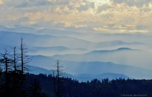 In Great Smoky Mountains National Park