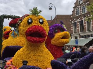 Bulbed flower floats Haarlem, Netherlands, by Arden