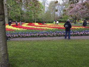 Keukenhof Gardens, Netherlands, by Arden