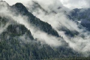 Fog in Alaska