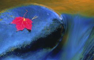water--16.jpg