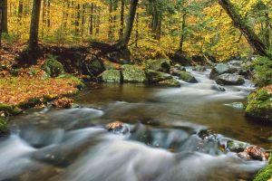 water--3.jpg