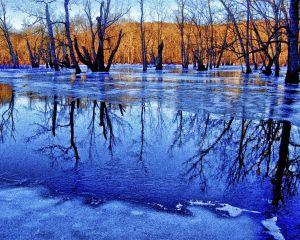 water--4-2.jpg
