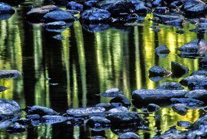 water--6.jpg