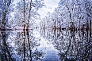 water--8.jpg